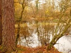Lumix lago