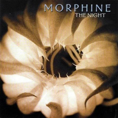The Night, Morphine