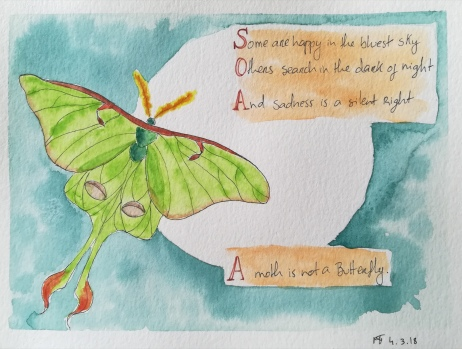 A Moth Is Not a Butterfly