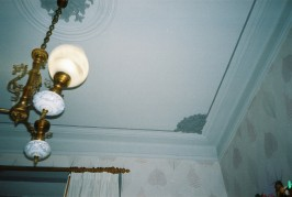 olympus ceiling