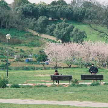 CNV000023 (1)